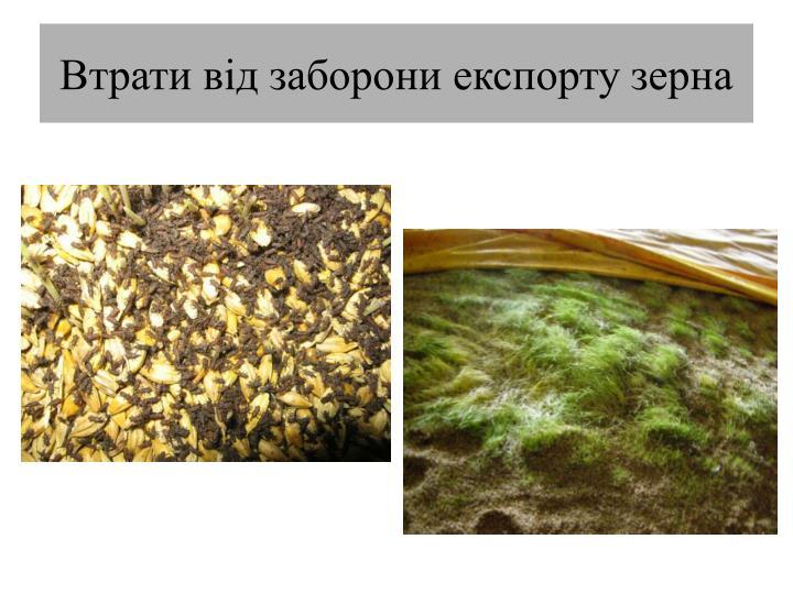 Втрати від заборони експорту зерна