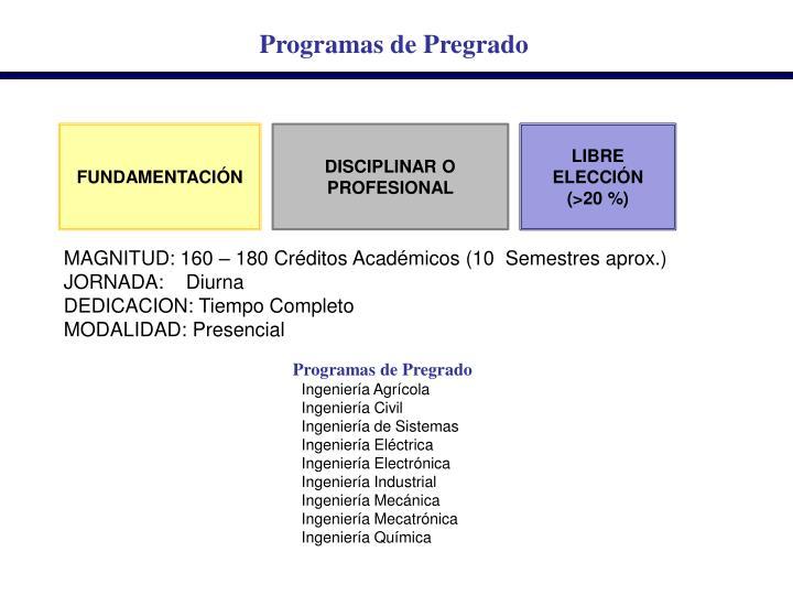 Programas de Pregrado