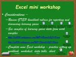excel mini workshop