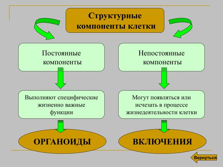 Структурные