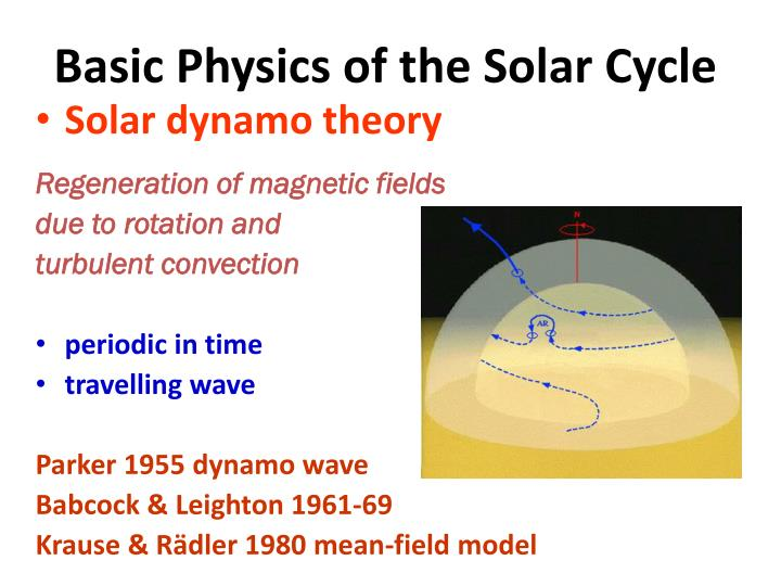 Basic Physics of the Solar Cycle