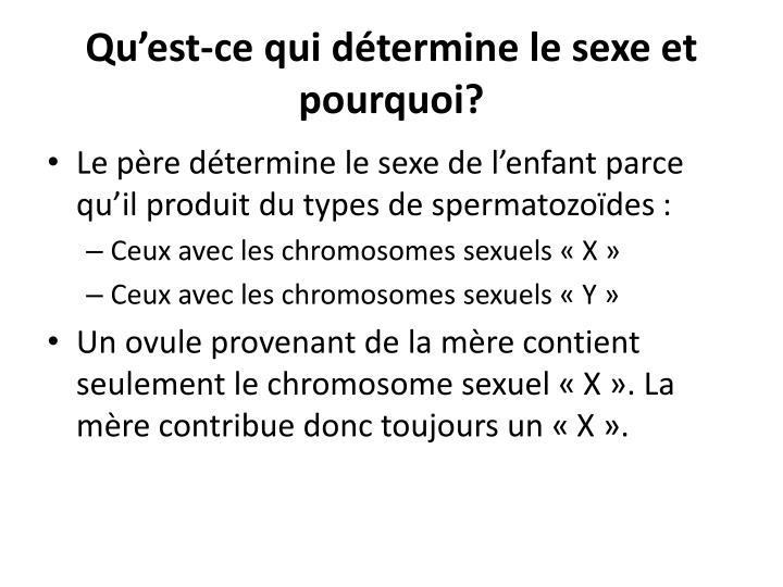 Qu'est-ce qui détermine le sexe et pourquoi?