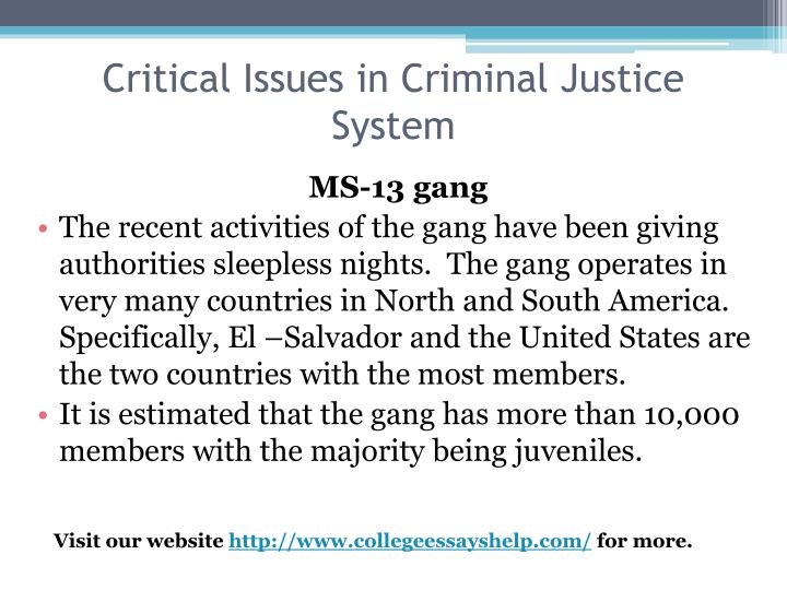 Critical issues in criminal justice system2