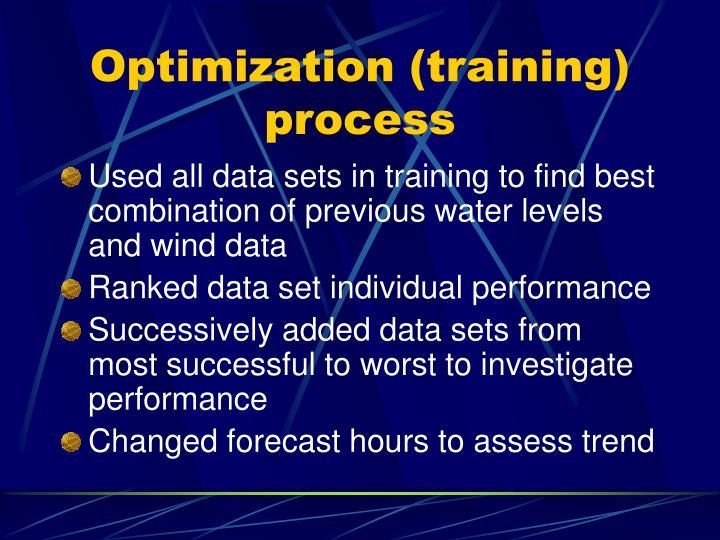 Optimization (training) process
