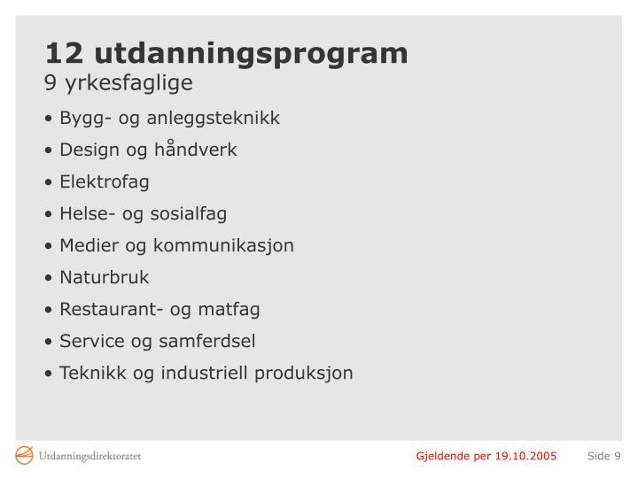 12 utdanningsprogram