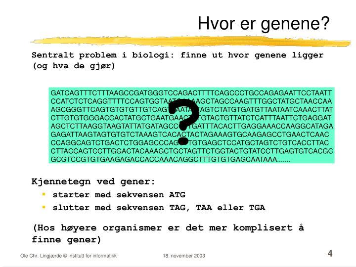 Hvor er genene?