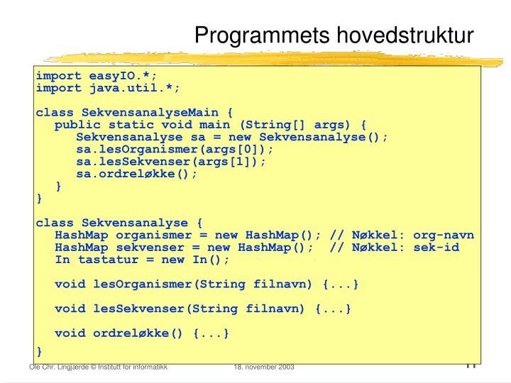 Programmets hovedstruktur