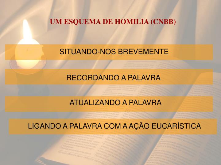 UM ESQUEMA DE HOMILIA (CNBB)