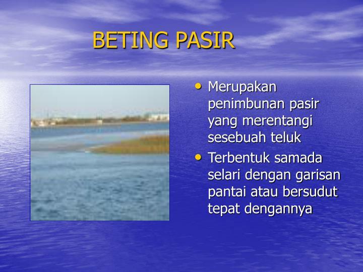 BETING PASIR