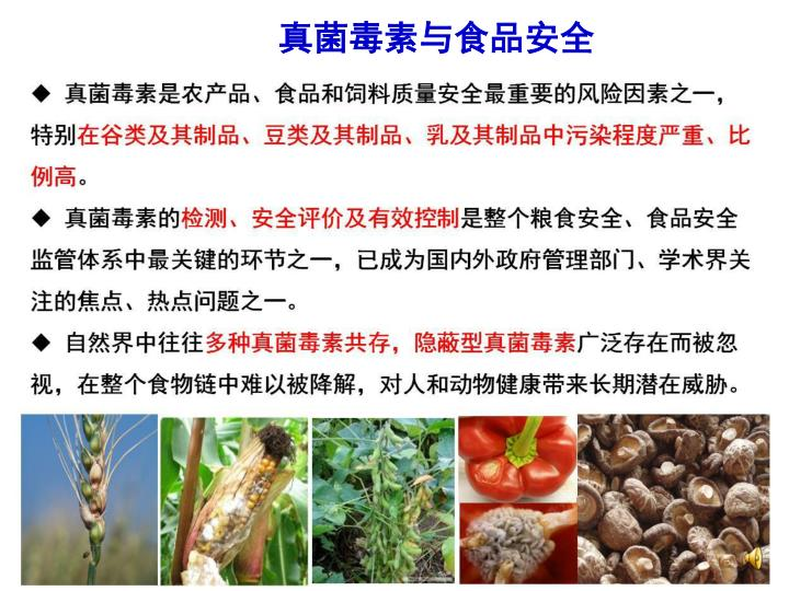 真菌毒素与食品安全