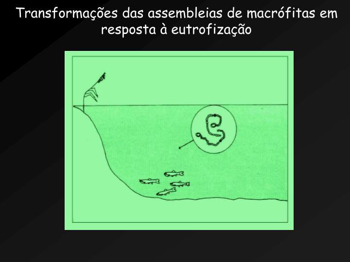 Transformaes das assembleias de macrfitas em resposta  eutrofizao