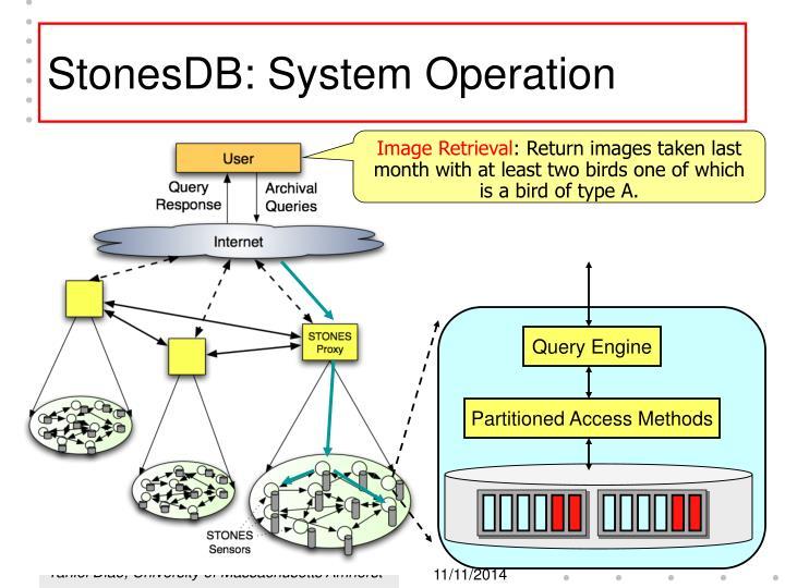 StonesDB: System Operation