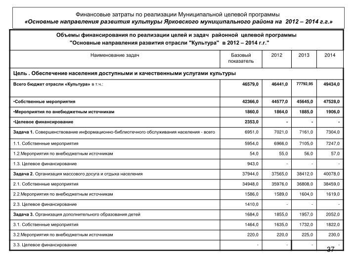 Финансовые затраты по реализации Муниципальной целевой программы