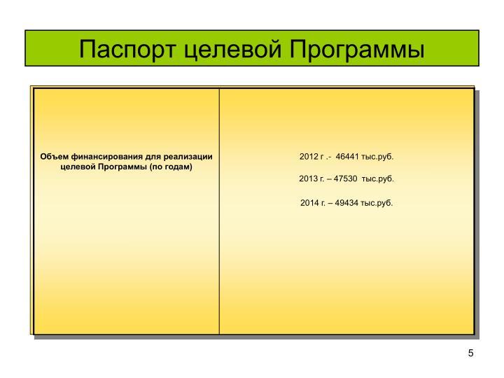 Паспорт целевой Программы