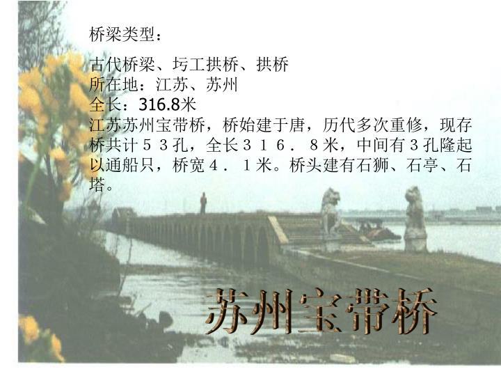 桥梁类型: