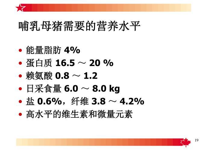 哺乳母猪需要的营养水平