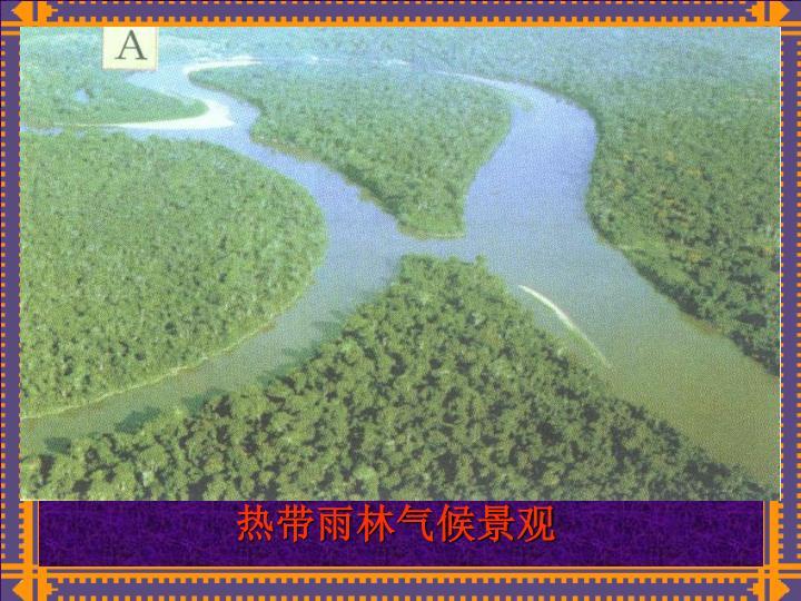 热带雨林气候景观
