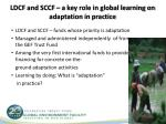ldcf and sccf a key role in global learning on adaptation in practice