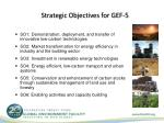 strategic objectives for gef 5