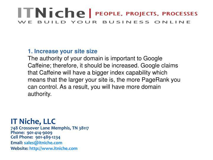 IT Niche, LLC