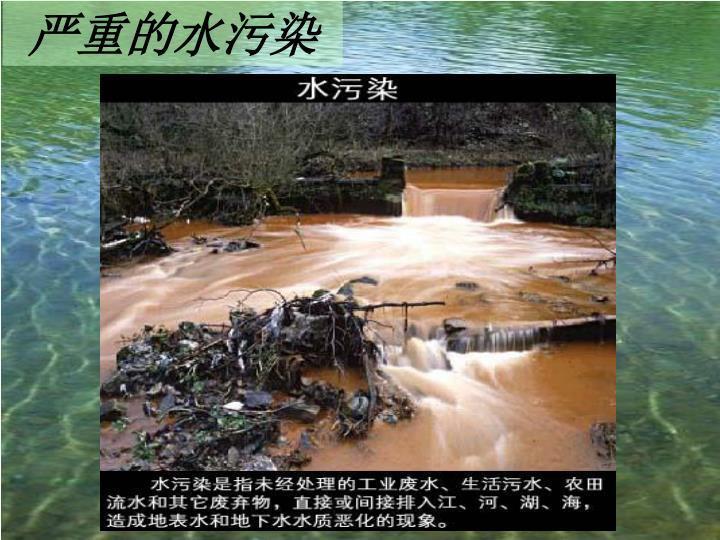 严重的水污染