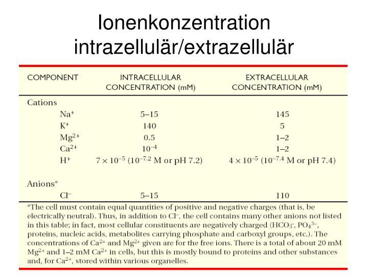 Ionenkonzentration intrazellulär/extrazellulär