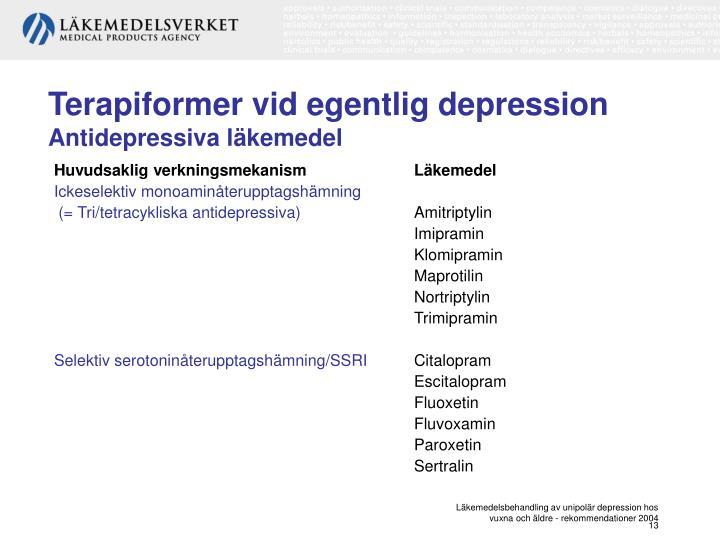 Terapiformer vid egentlig depression