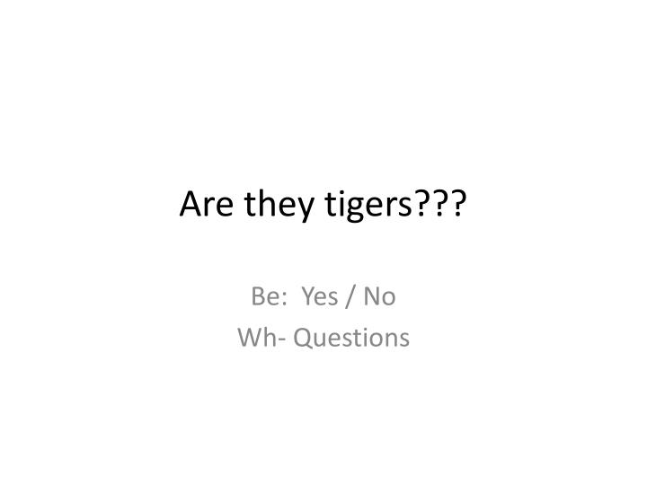Are they tigers
