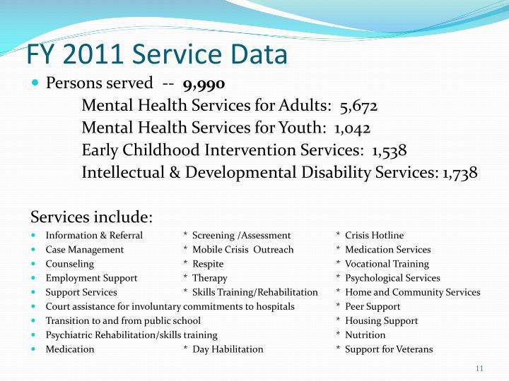 FY 2011 Service Data