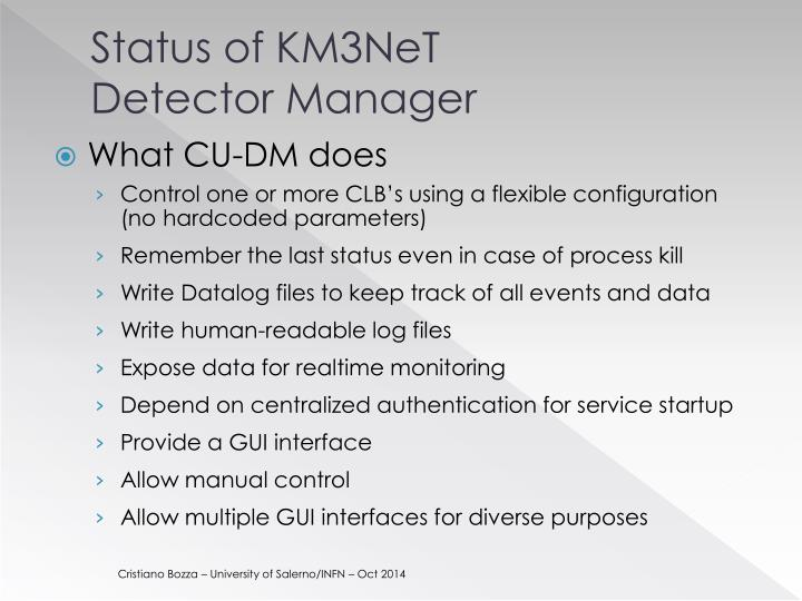 Status of km3net detector manager1
