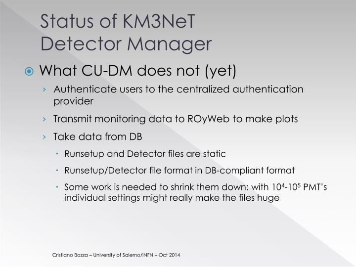 Status of km3net detector manager2