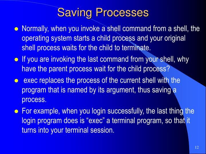 Saving Processes