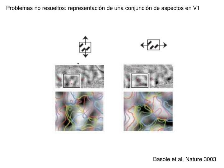 Problemas no resueltos: representación de una conjunción de aspectos en V1