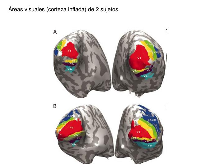 Áreas visuales (corteza inflada) de 2 sujetos