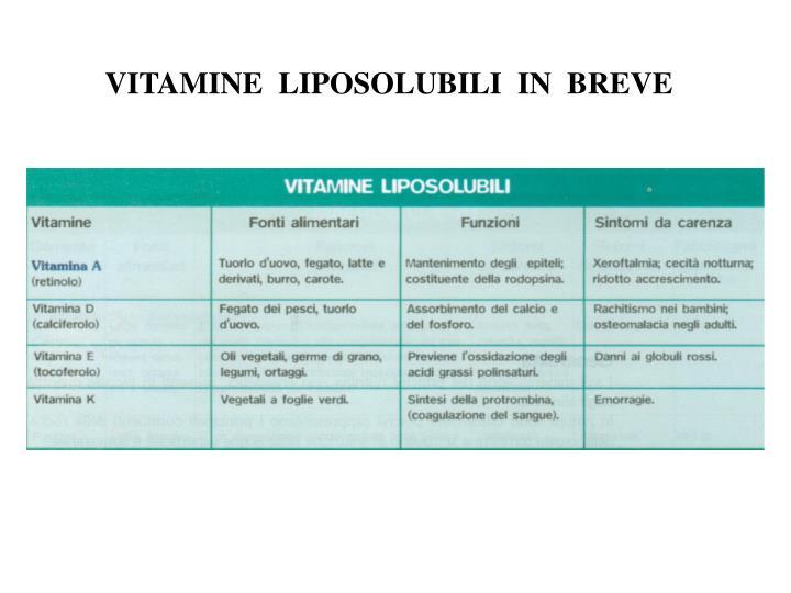 Dieta di proteinaceous durante 4 settimane per perdita di peso
