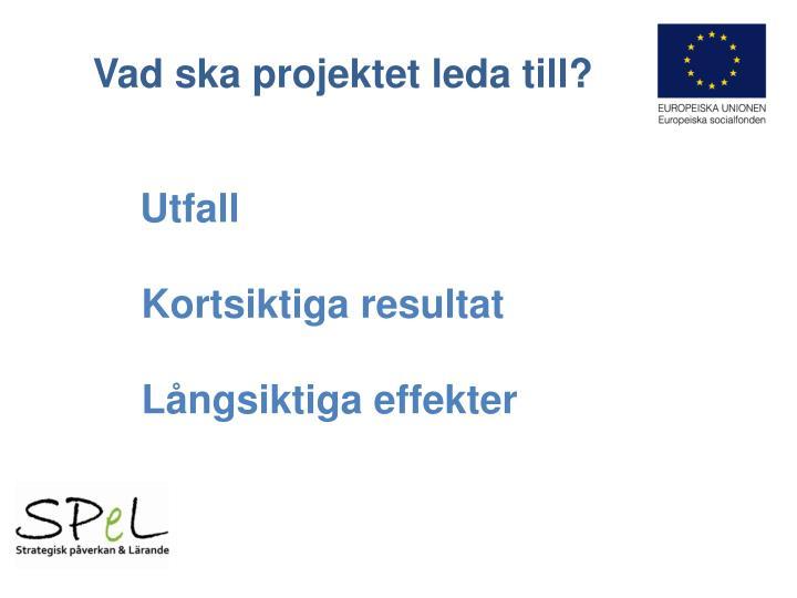 Vad ska projektet leda till?