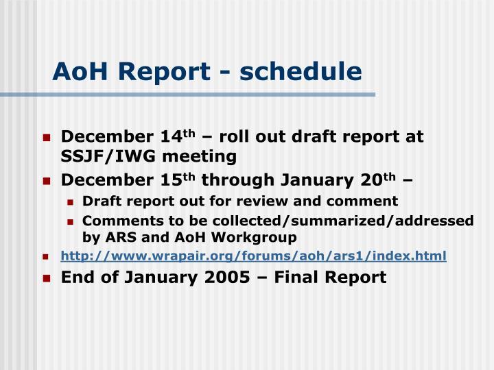 AoH Report - schedule