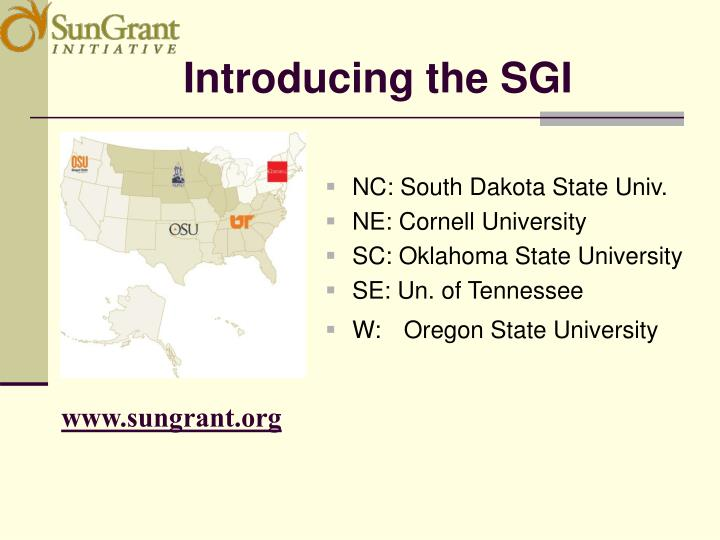 Introducing the SGI