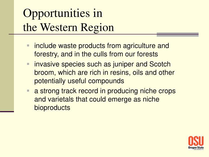 Opportunities in