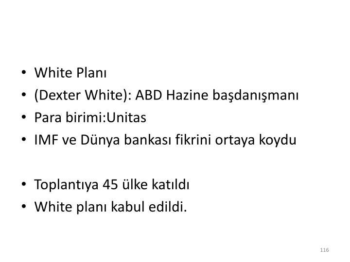 White Planı