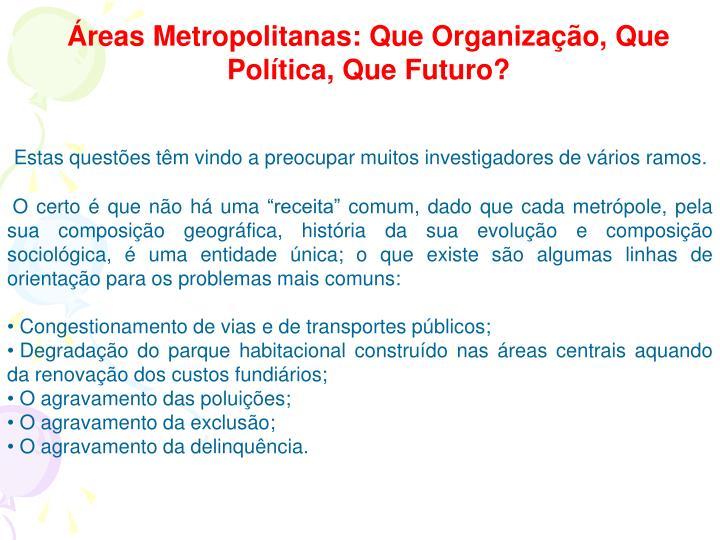 Áreas Metropolitanas: Que Organização, Que Política, Que Futuro?
