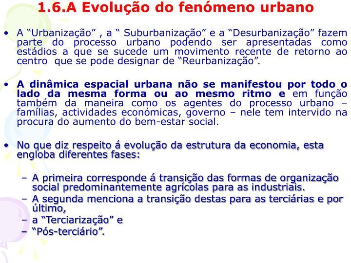 1.6.A Evolução do fenómeno urbano
