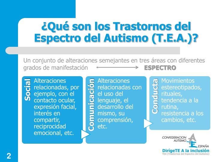 ¿Qué son los Trastornos del Espectro del Autismo (T.E.A.)?