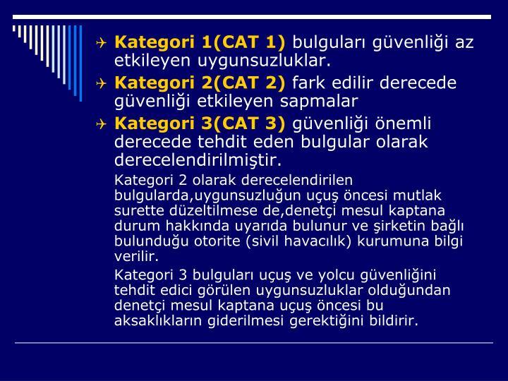 Kategori 1(CAT 1)