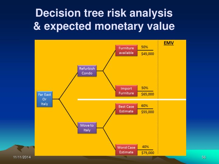 Decision tree risk analysis