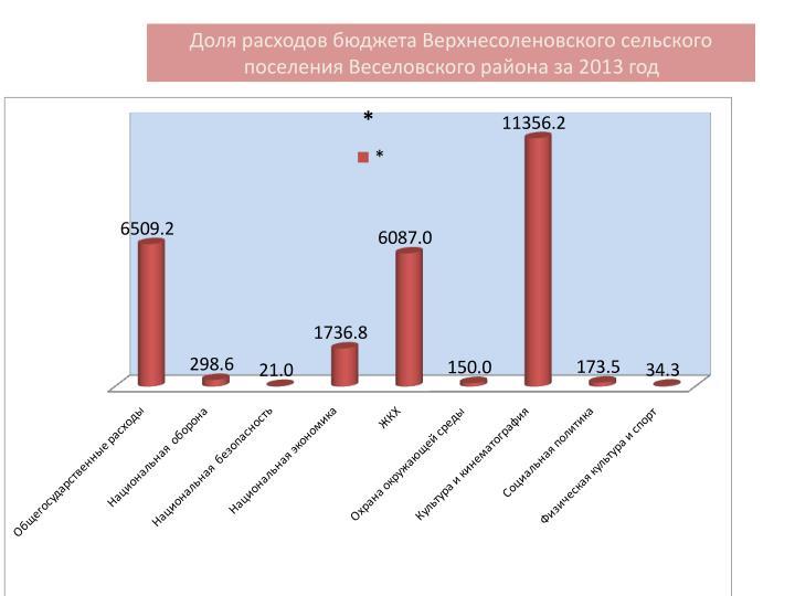 Доля расходов бюджета Верхнесоленовского сельского поселения Веселовского района за 2013 год