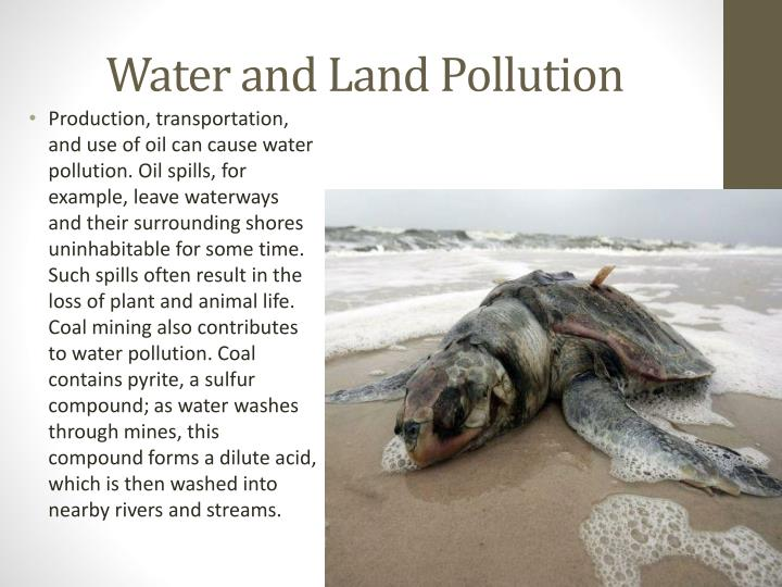 Water and Land Pollution