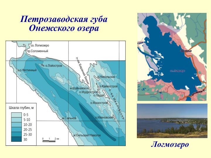 Петрозаводская губа