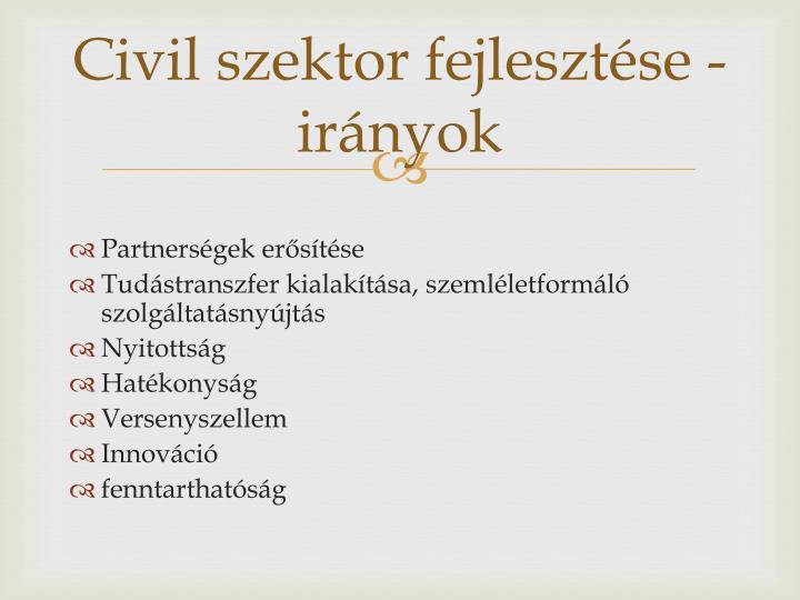 Civil szektor fejlesztése - irányok