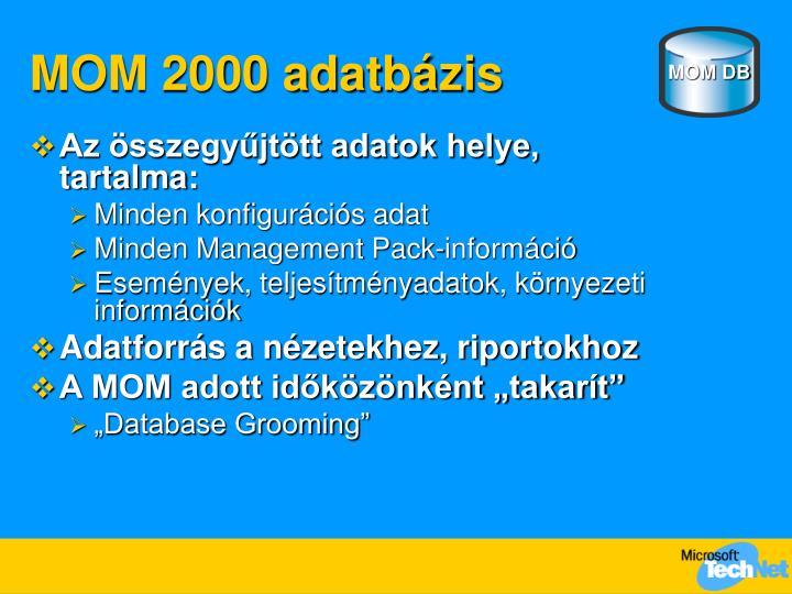 MOM 2000 adatbázis